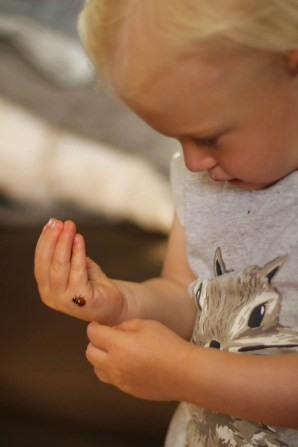 Ry with her first Lady Bug