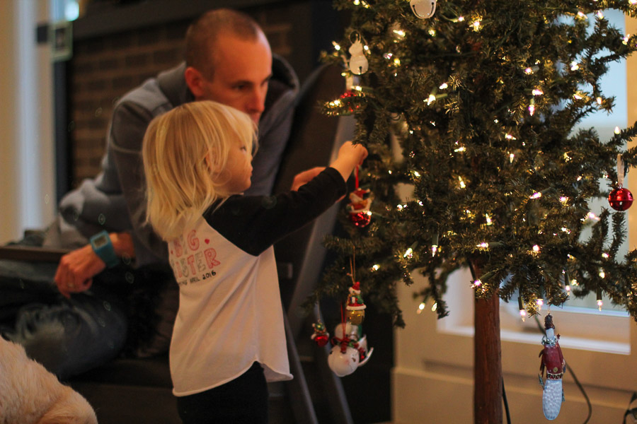 Decorating the tree, or maybe its redecorating the tree.