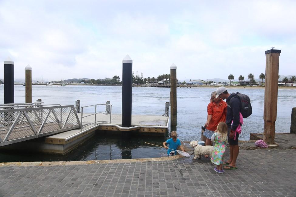 Cooks Beach Ferry Terminal