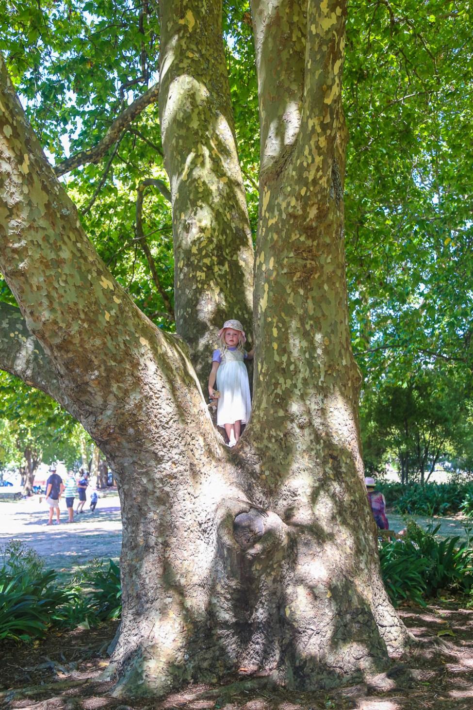 Rotorua Park