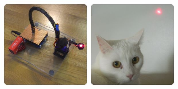 cat laser robot