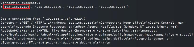 ESP32 ESP8266 MicroPython IP Address