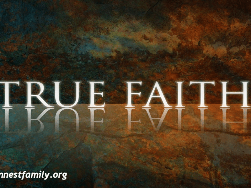 true faith @randomnestfamily.org