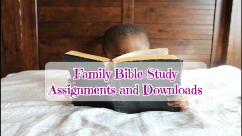 little boy reading his Bible, feature