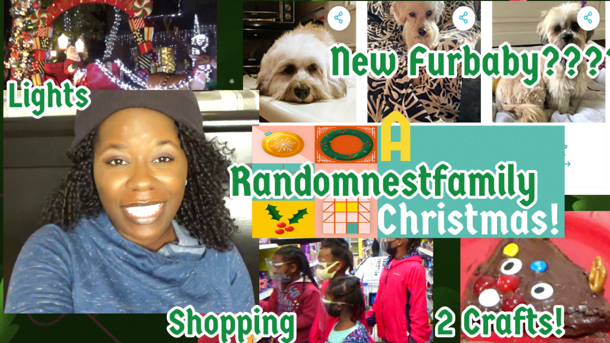 A randomnestfamily Christmas feature picture