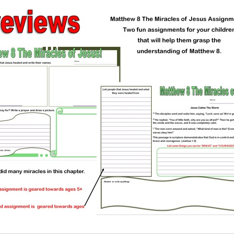 Matthew 8_Miricles of Jesus Assignment preview@Randomnestfamily