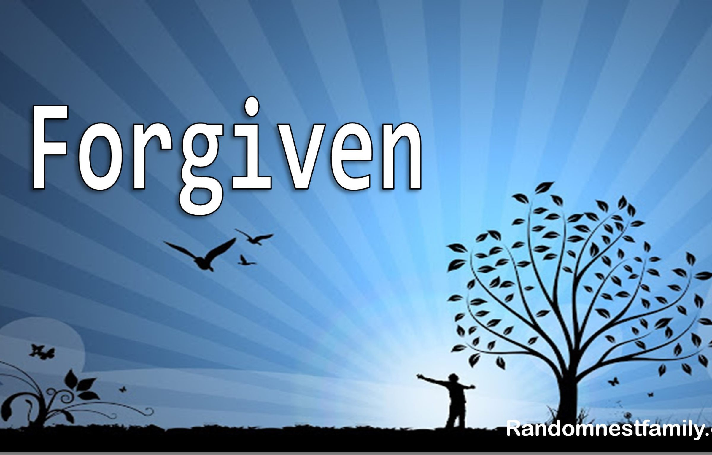 Forgiven photo @randomnestfamily
