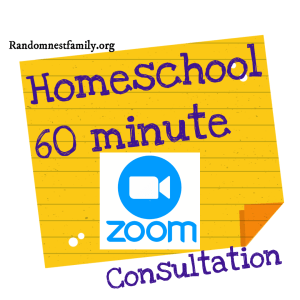 60 min Consultation @randomnestfamily.org