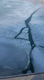 harbour-ice