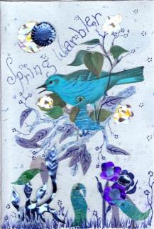 Blue Spring Warbler