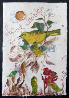 Spring Warbler