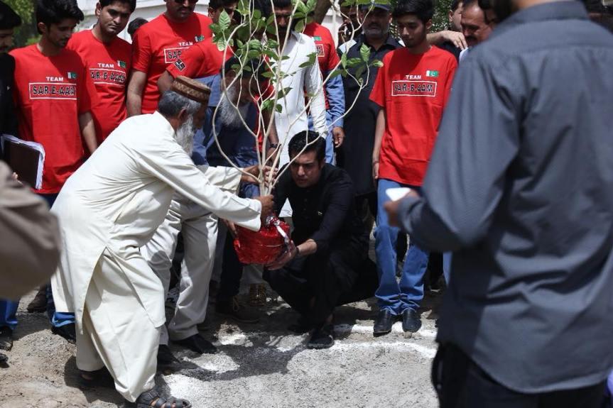 plant 1.4 million trees in Pakistan