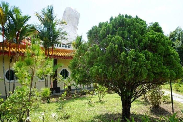 La paz que se respira en los jardines del imponente templo...