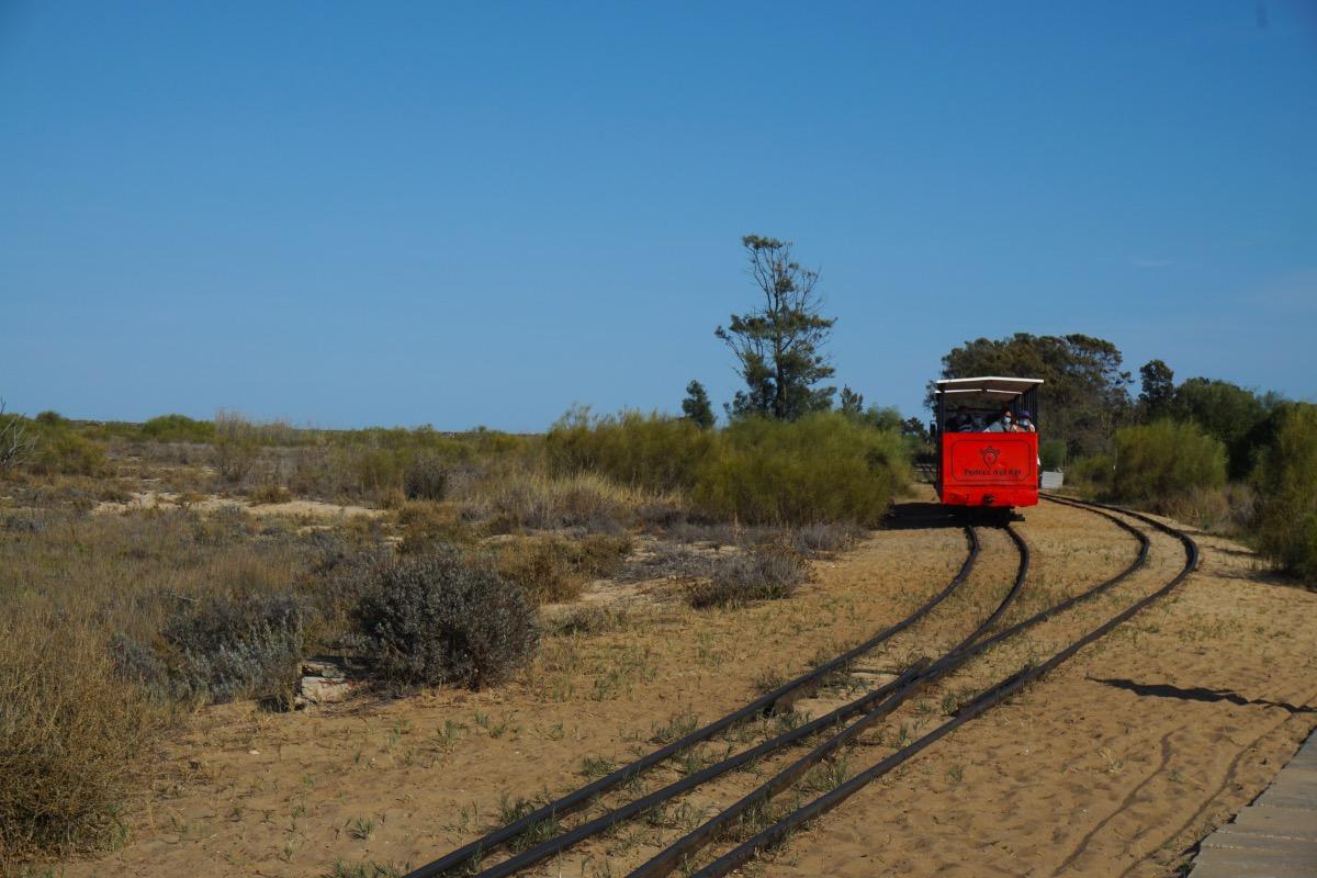Tren turístico entre Pedras de El-Rei y Praia do Barril