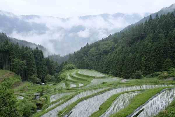 cultural landscapes of tokushima
