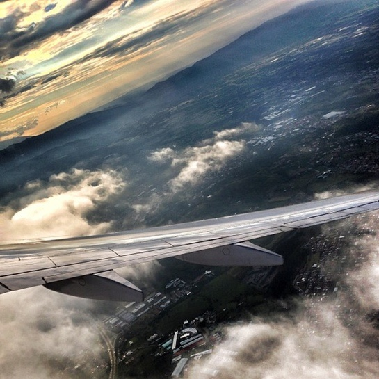 Wing to somewhere