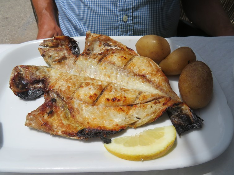 We enjoyed fresh fish on the patio at Galactia.