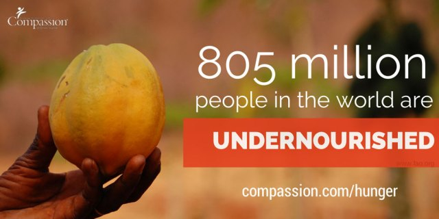 805 million people in the world are undernourished