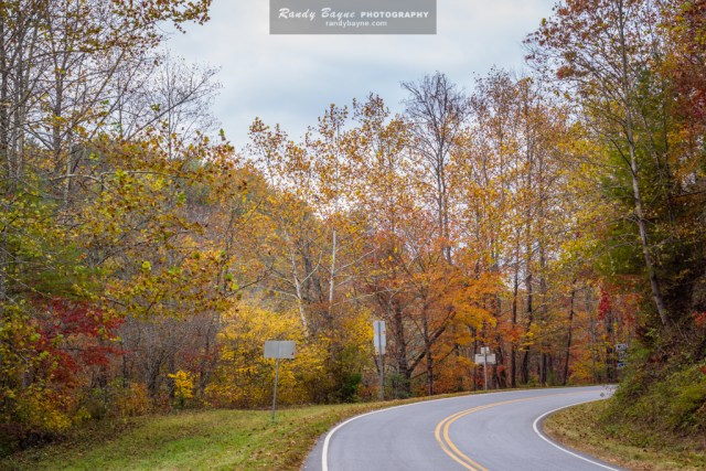 The road home - fall color