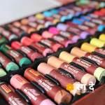 Artist Oil Pastels set by Camlin, buy onlin from Rang De Studio