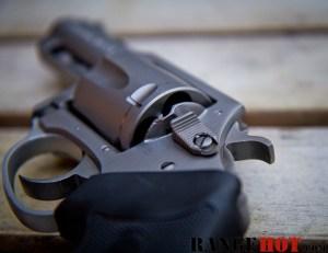 Charter Arms Bulldog-7