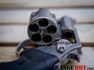 Charter Arms Bulldog-8