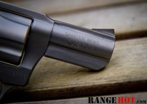 Charter Arms Bulldog-9