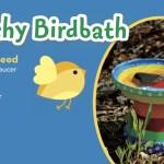 Splashy Birdbath Nwf Ranger Rick