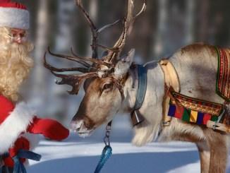 Reindeer Ranger Rick December January 2018