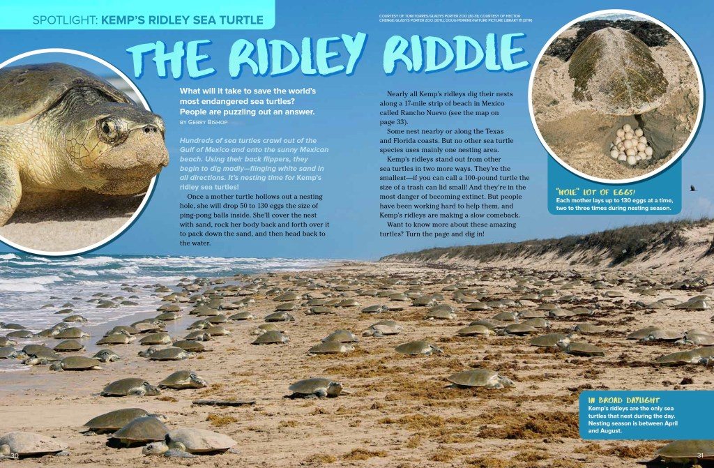 Ridley Riddle Ranger Rick March 2017 1