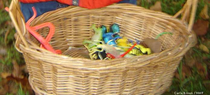 Bug scavenger hunt basket