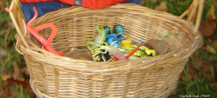 Bug scavenger hunt basket