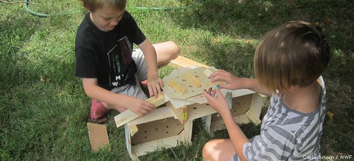 Building boxes