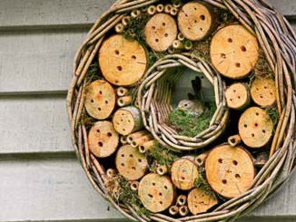 Ranger Rick Bug Hotels June July 2014