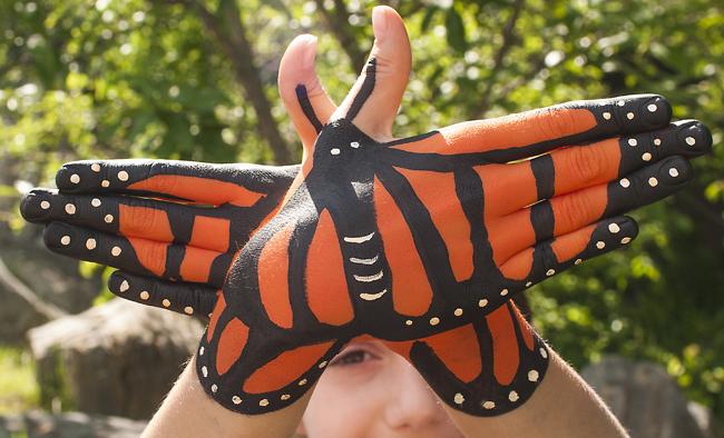 Monarch hands