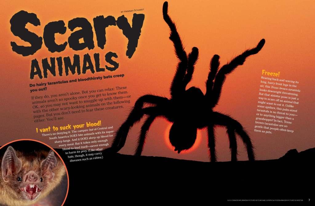 Ranger Rick Scary Animals October 2014 1