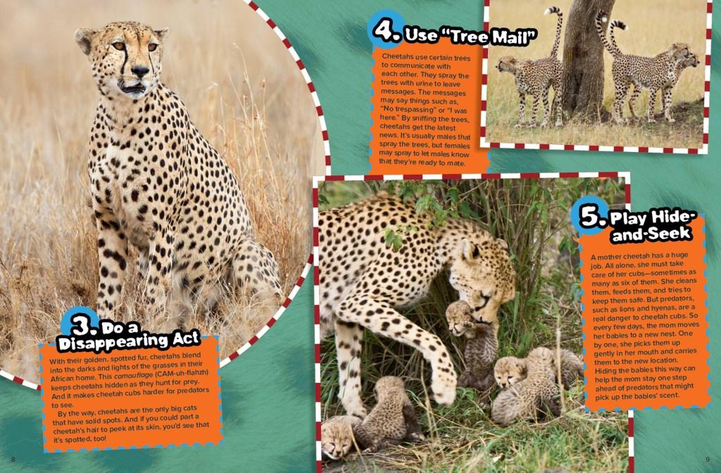 Ranger Rick Cheetah Tricks September 2015 2
