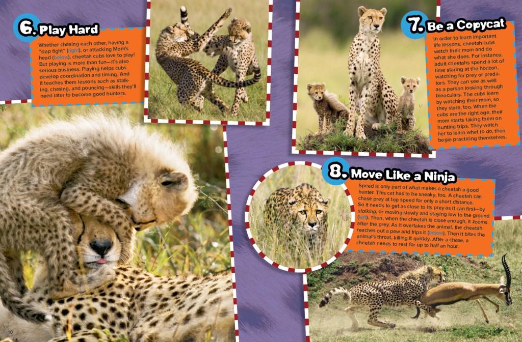 Ranger Rick Cheetah Tricks September 2015 3