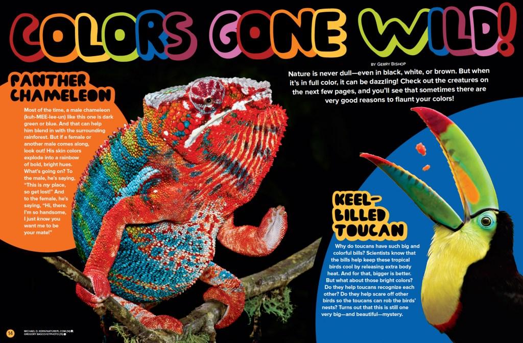 Ranger Rick Colors Gone Wild October 2015 1