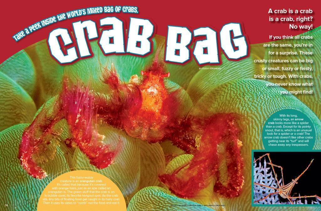 Ranger Rick Crab Bag August 2016 1
