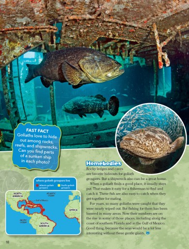 Ranger Rick Super Grouper November 2015 3