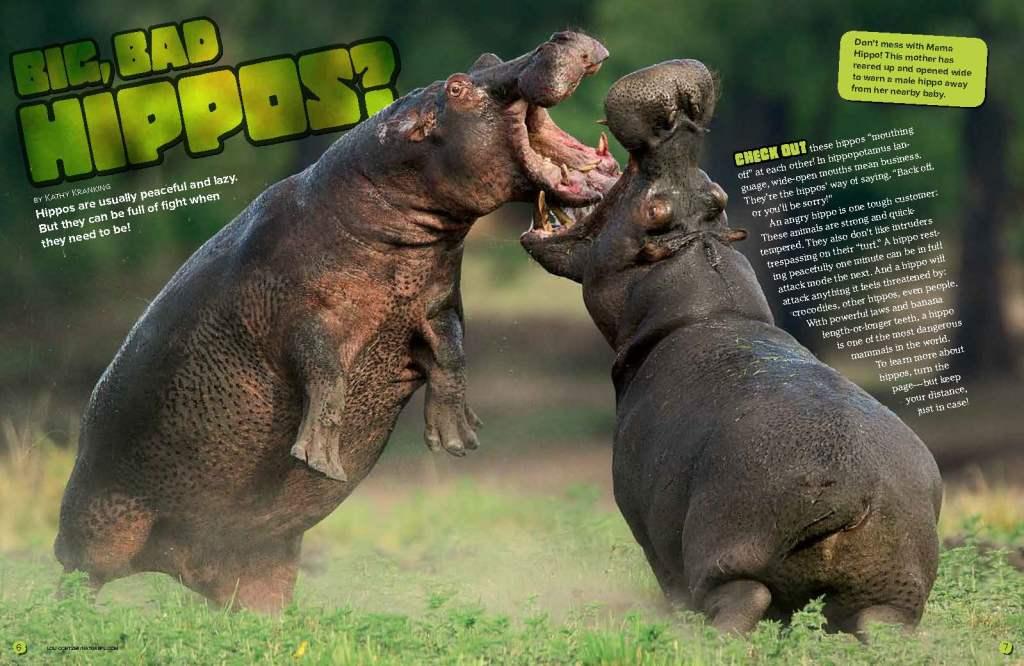 Ranger Rick Hippos May 2015 1