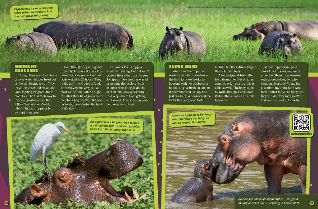 Ranger Rick Hippos May 2015 3