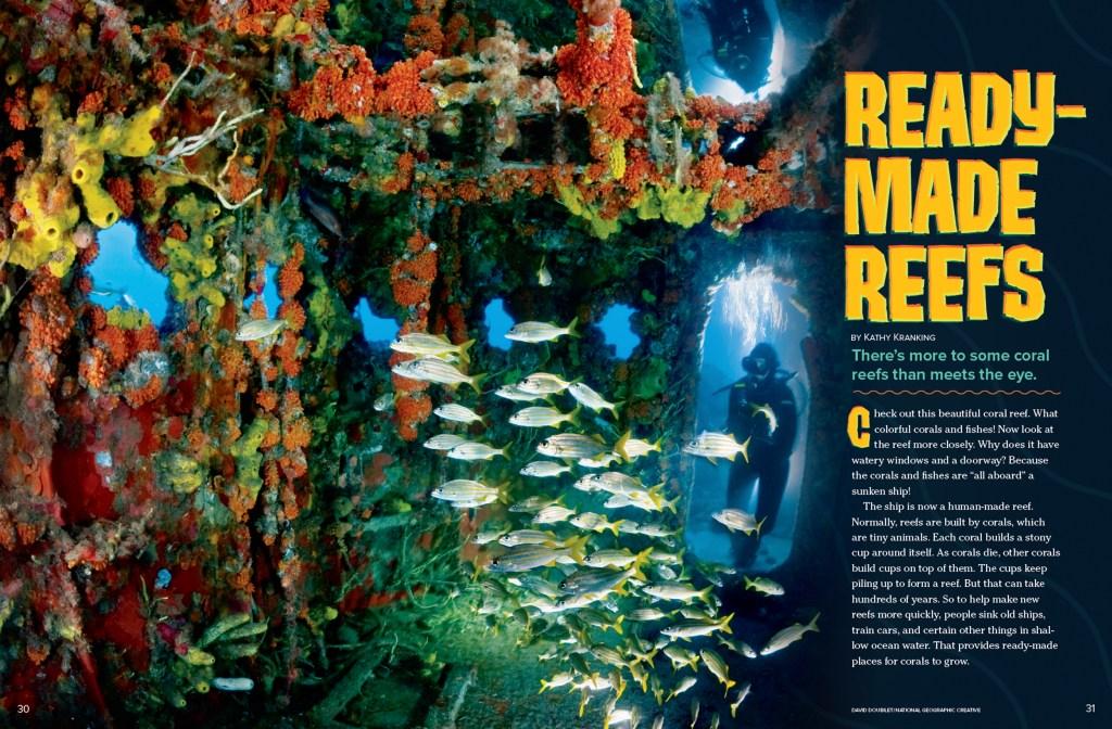 Ranger Rick Reefs December January 2016 1