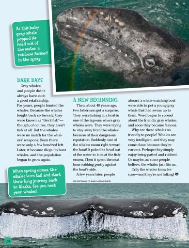 Ranger Rick Whale February 2016 3