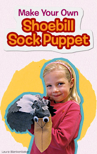 Shoebill puppet