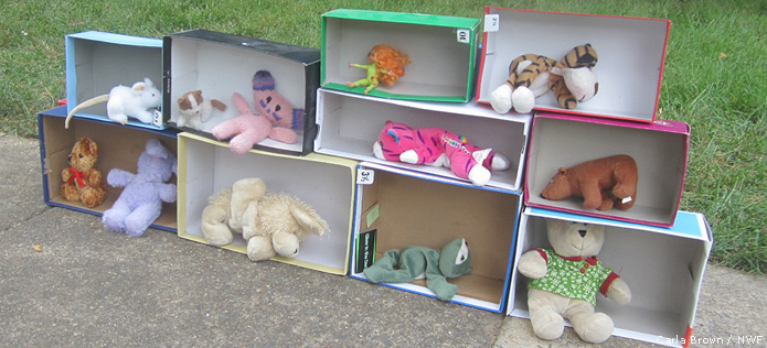 Shoeboxes with animals