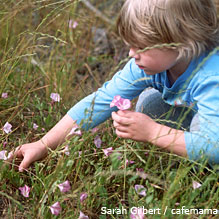 Child picking flowers