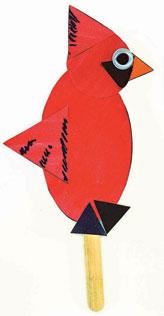 Shapely cardinal