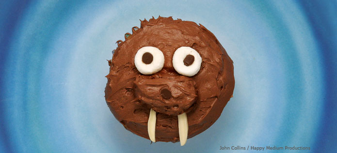 walrus cupcake